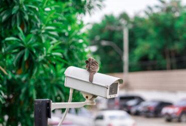 ۶ تجربه شگفت انگیز با خرید دوربین مداربسته